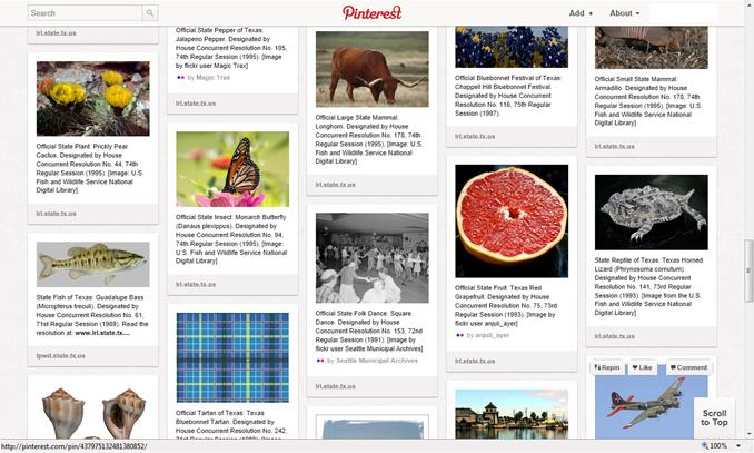 Screenshot of State Symbols Pinterest board